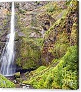 0237 Multnomah Falls Oregon Acrylic Print