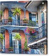 0255 Balconies - New Orleans Acrylic Print