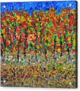 035 Fall Colors Acrylic Print