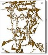045-13 Acrylic Print