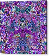 0476 Abstract Thought Acrylic Print