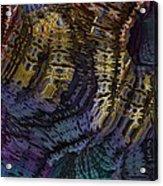 0520 Acrylic Print