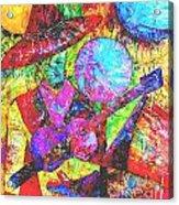 054-13 Acrylic Print