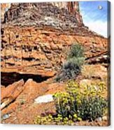 0712 Guardian Of Canyonland Acrylic Print