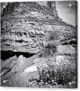 0715 Guardian Of Canyonland Acrylic Print