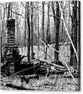 072606-32bw  Once Upon A Time There Was A Cabin In A Forest.. Acrylic Print