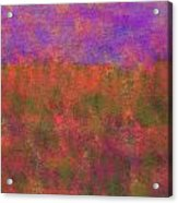 0867 Abstract Thought Acrylic Print