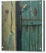 0ld Door Acrylic Print by Steven Wood