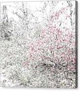 1-108 Manifestations Of Eternity Acrylic Print