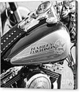 110th Anniversary Harley Davidson Acrylic Print