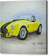 1965 Shelby Cobra Acrylic Print by Terri Maddin-Miller