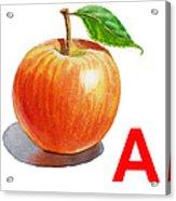 A Art Alphabet For Kids Room Acrylic Print
