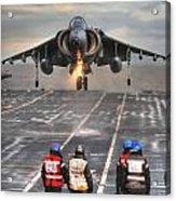A Gr9 Harrier  Acrylic Print