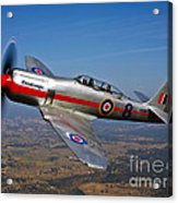 A Hawker Sea Fury T.mk.20 Dreadnought Acrylic Print