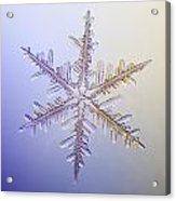 A Real Snowflake Showing The Classic Acrylic Print