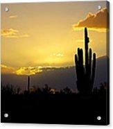 A Saguaro Sunset  Acrylic Print