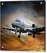 A10 Thunderbolt II Acrylic Print