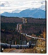 Alaska Oil Pipeline Acrylic Print