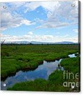 Alaskan Tundra Acrylic Print