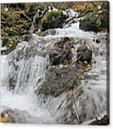 Alaskan Waterfall Acrylic Print
