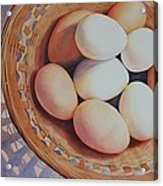 All My Eggs In One Basket Acrylic Print