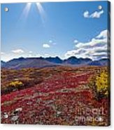Alpine Landscape In Fall Acrylic Print