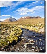 Altiplano In Bolivia Acrylic Print
