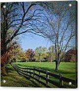 An Autumn Stroll Acrylic Print