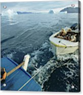 An Inuit Hunter Ferries His Sled Dogs Acrylic Print