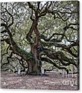 Angel Tree Acrylic Print