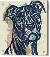 Animal Pop Art Etching Poster - Dog - 4 Acrylic Print