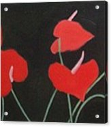 Anthuriums Acrylic Print