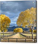 Arizona Horse Ranch Acrylic Print