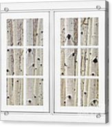 Aspen Forest White Picture Window Frame View Acrylic Print