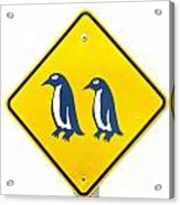 Attention Blue Penguin Crossing Road Sign Acrylic Print