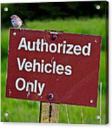 Authorized Vehicles Only Acrylic Print
