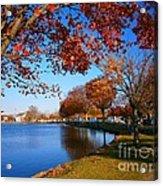 Autumn At Argyle Park Acrylic Print