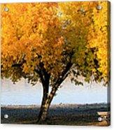 Autumn At The River Acrylic Print