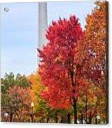 Upward - Autumn High Acrylic Print