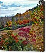 Autumn In Full Bloom Acrylic Print