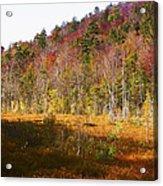 Autumn In The Adirondacks Acrylic Print