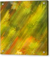 Autumn Leaves On The Abstract Background Acrylic Print