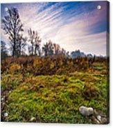 Autumn Morning Acrylic Print by Davorin Mance