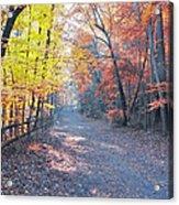 Autumn On Forbidden Drive Acrylic Print