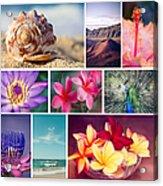 Awakening In Paradise Acrylic Print