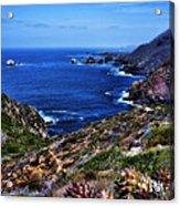 Baja Coast Acrylic Print