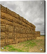 Bales Of Hay On Farmland 4 Acrylic Print