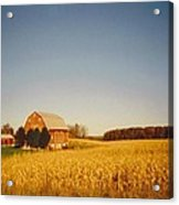 Barn And Corn Field Acrylic Print