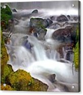 Base Of The Falls Acrylic Print by Marty Koch