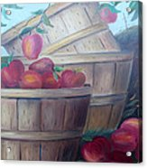 Baskets Of Apples Acrylic Print by Glenda Barrett